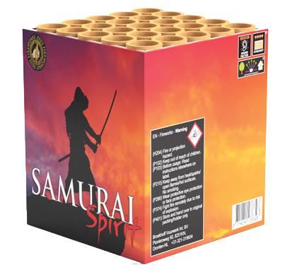 Samurai-Spirit-1