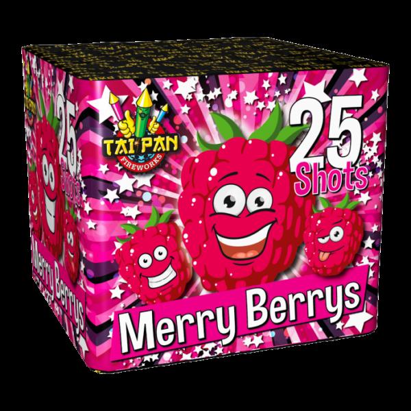 tf0402-merryberrys_2019